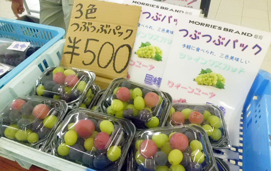 160930_misonoichi1